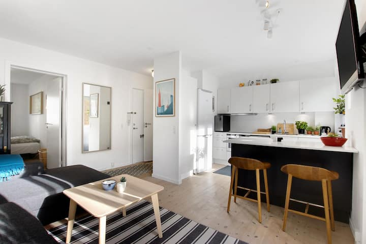 Whole quiet apartment in real heart of Copenhagen