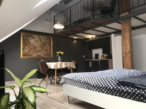 NUEVO Studio Savoya 2, Llegada sin restricción de horario en el centro histórico de la ciudad