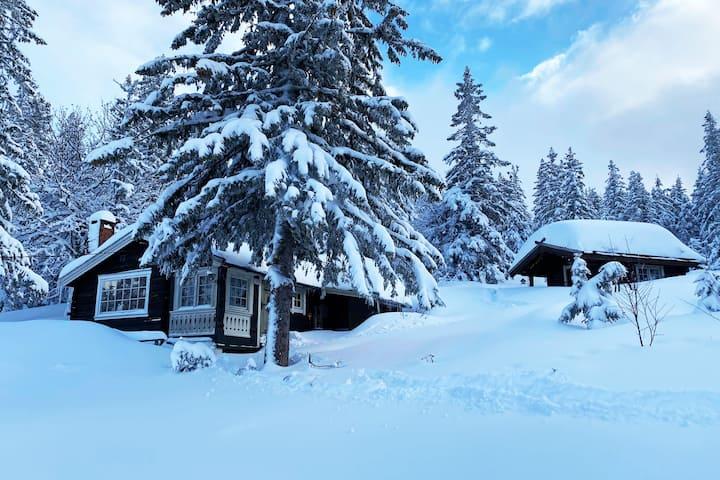 Koselig hytte på Lifjell - Rett ved skisenteret