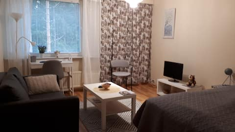 Comfortable accomodation in Art-Town Kankaanpää