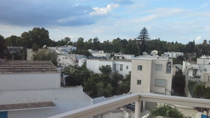 tres bel appartement a carthage salambo