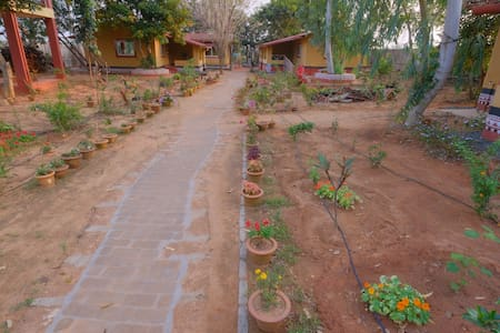 Paved pathway inside the property