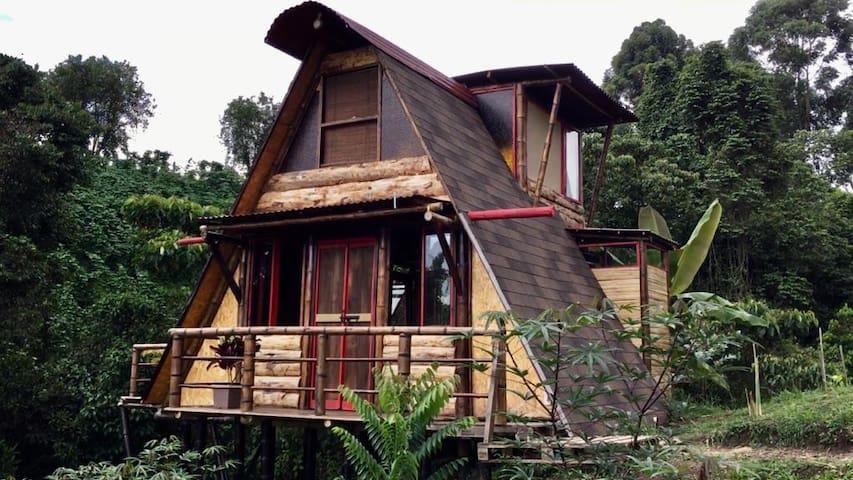"""""""Cabaña completa """" privada, descanso, naturaleza."""