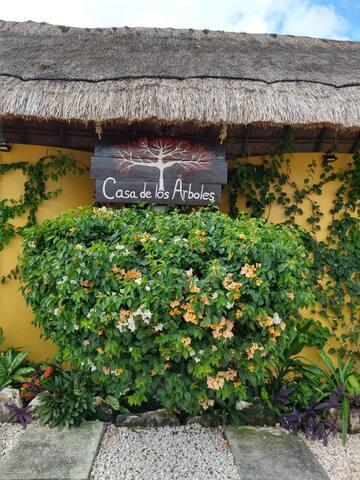 """""""Casa de los Arboles"""" Vive Mahahual Por Día"""