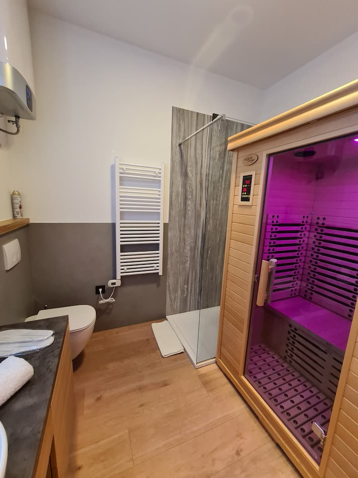 "Deluxe apartment with Sauna ""In the Center 2"""