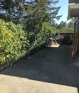Parking area and path to back of the house where guest suite entrance is