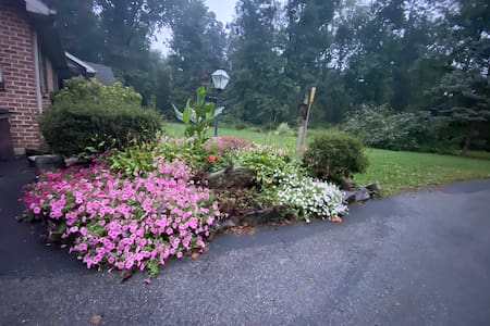 Easy driveway with flowers along the drive