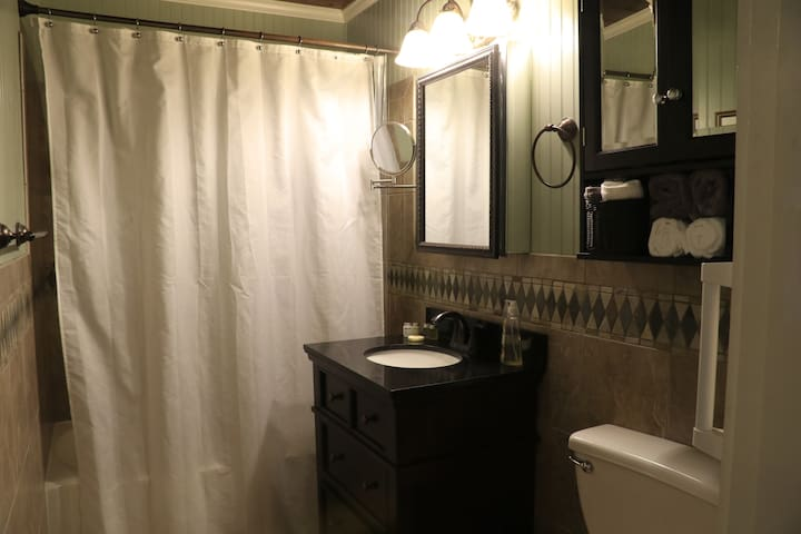 Guest bath tub and shower