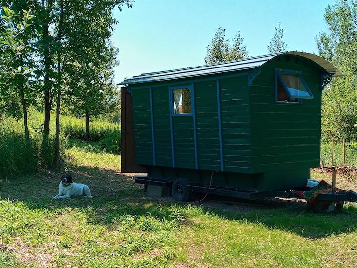 The Vardo - a unique tiny house on wheels