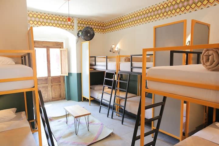 Selina Oaxaca - Bed in Small Dorm