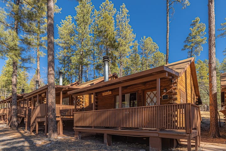 "Forest Cabin #2 | ""Birds Nest"""