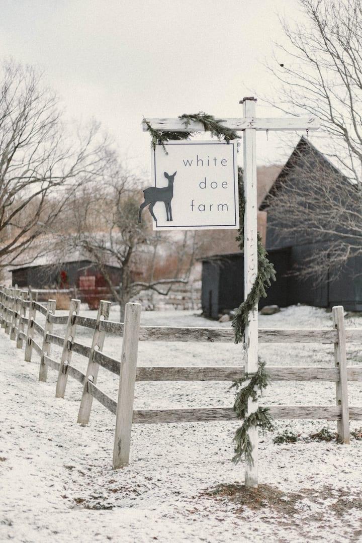 NEW! Lovingly restored Antique Farm Home