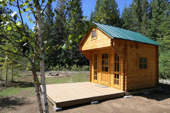 Cozy Cabin #1 - private cabin in the wilderness!