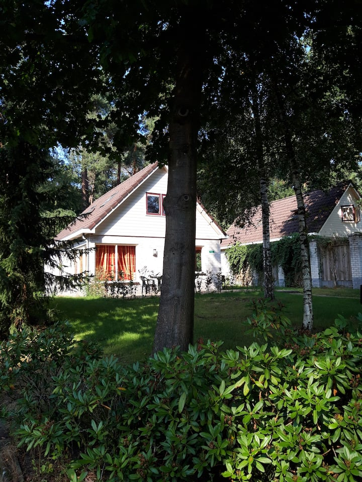 Vakantiehuis op rustig bospark Veluwe (Lunteren) 3