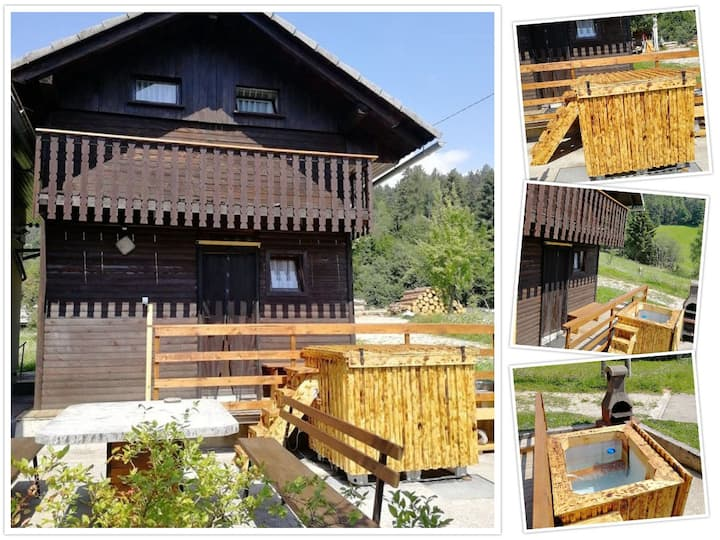 Apartment Borovnica with hot tub