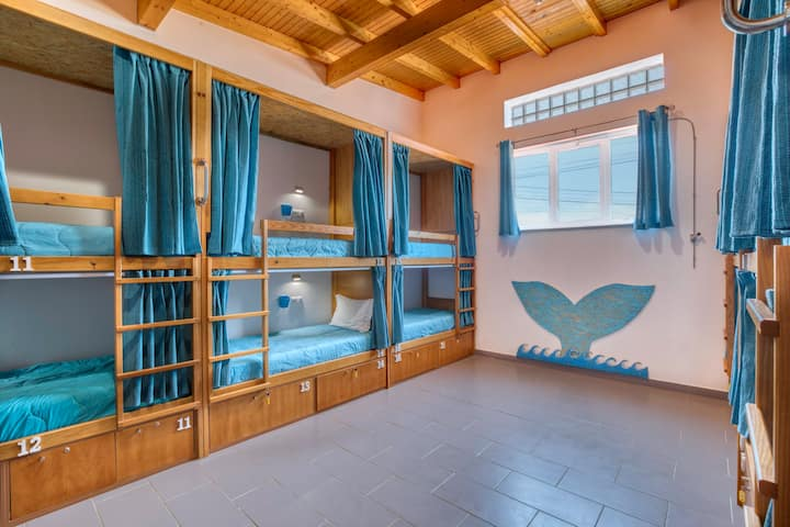 Sagres Sun Stay Bed in 12-Bed Mixed Dormitory Room