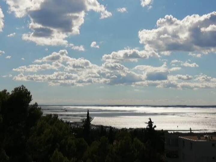Sète, App T2 4 Pers - Terrasse et Piscine