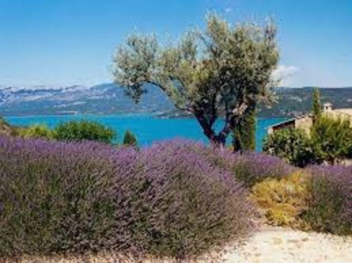 unique ! GRAND GITE Piscine BIO privée- Provence!