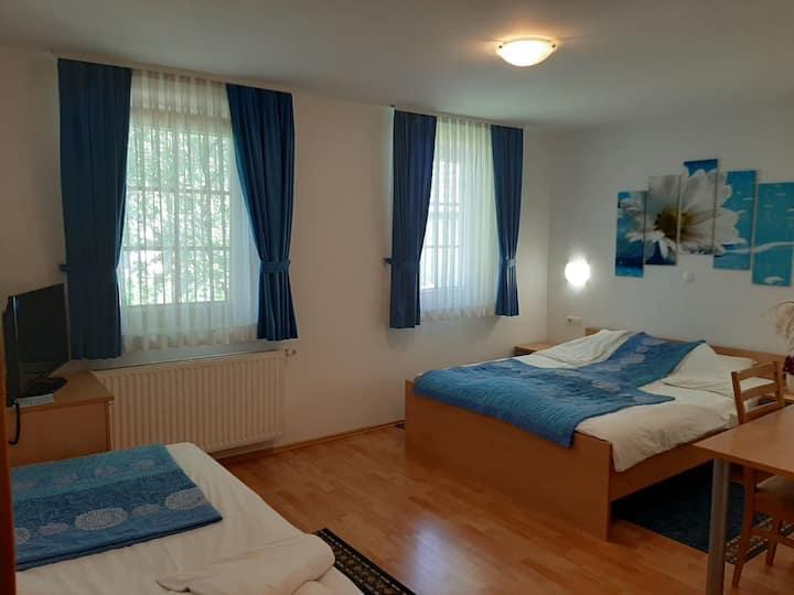 Triple room in Turizem Loka B&B