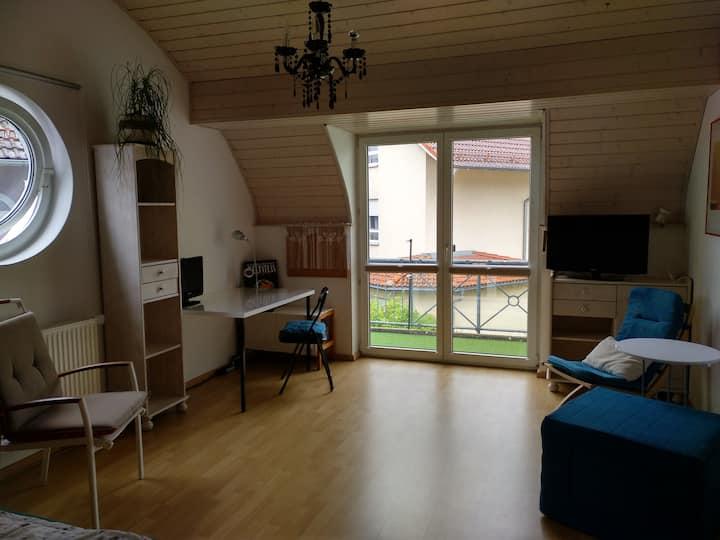 Großes mod.,helles Zi.+ Balkon am LGS in Kronach