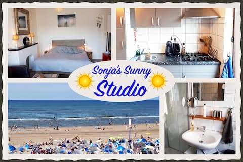 Sonja's Sunny Studio (private parking)