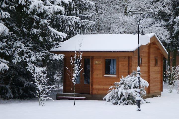 Cozy blokhutje/tinyhouse in de Brabantse natuur 01