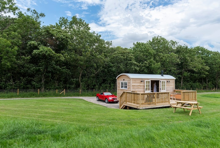 Lapwing Shepherds Hut, with private hot tub