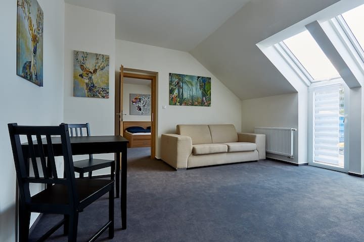 Rodinný pokoj s 1 ložnicí