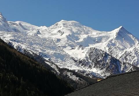 Studio+balcon vue Mt Blanc+parking,centre Chamonix
