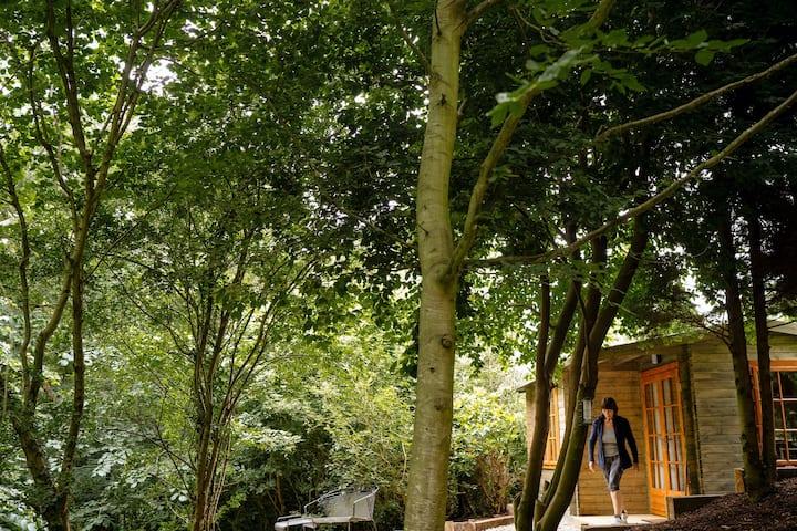 Romantic woodland studio