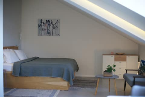 Modern and Cosy Studio apartment