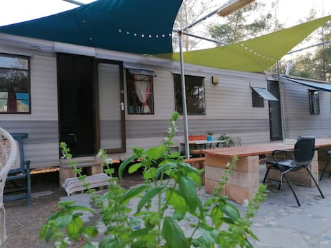 Ananke: off-the-grid caravan in forest