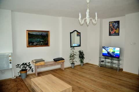 Central flat for your holiday in Karlovy Vary