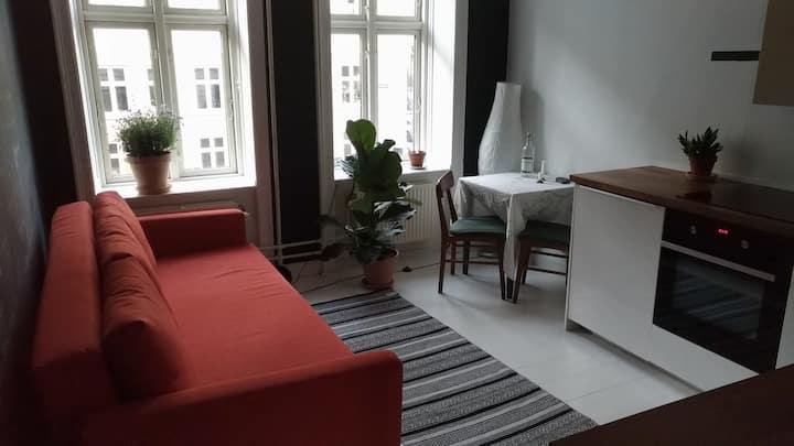 Cozy apt in trendy, vibrant Vesterbro