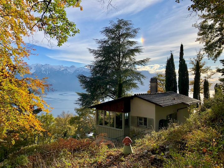 Lavaux Lodge > little piece of heaven, unique view