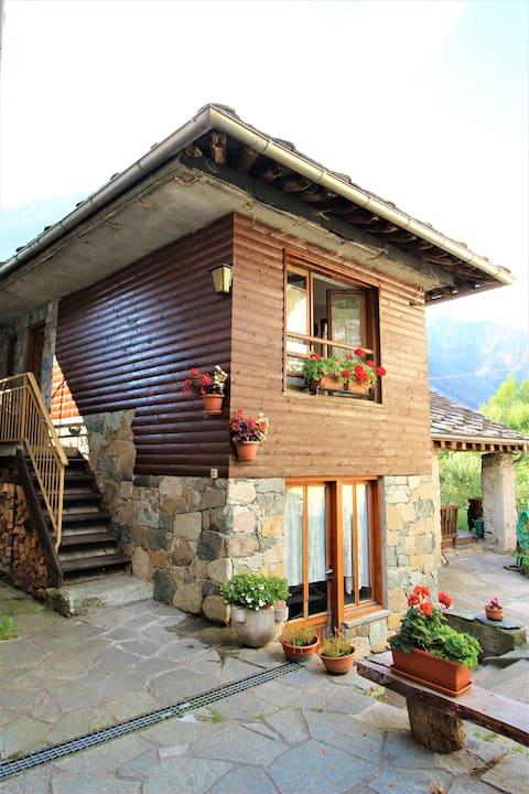 Alpine village cabin