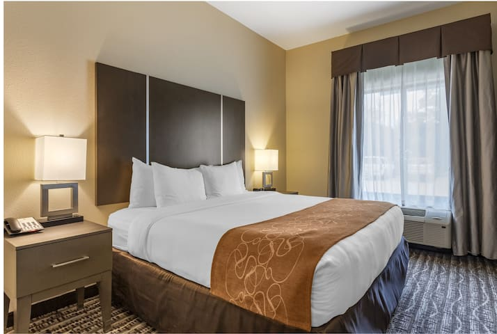 This suite has a tea/coffee maker, cable TV and seating area. Suite-382 Sq Feet