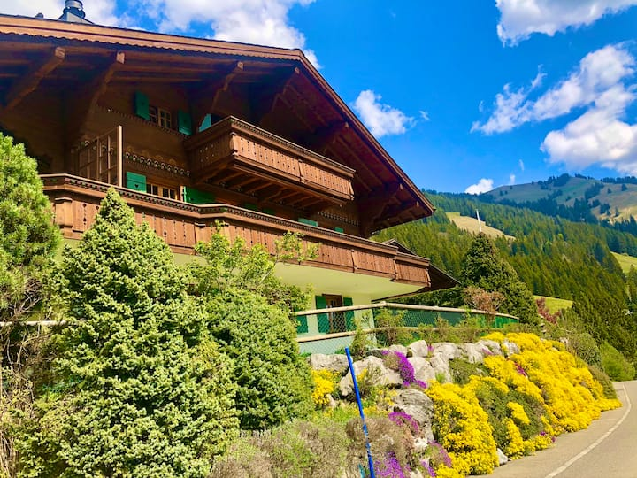 Rougemont Chalet with spectacular view