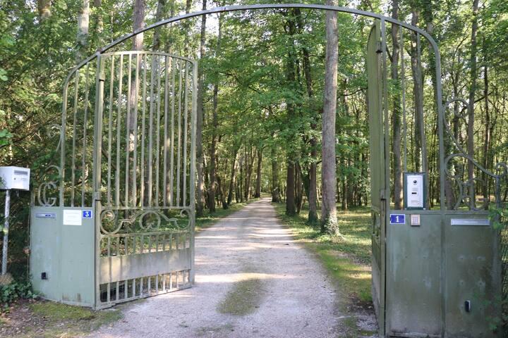 suite parental en bosque privado