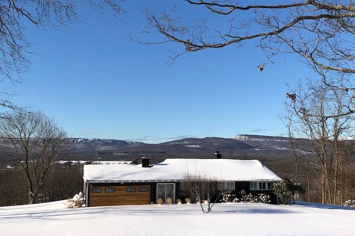 Mid Century Modern Mountain View House