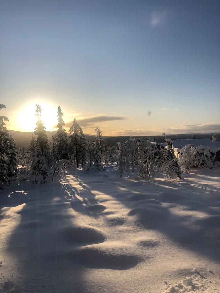 Fjällstuga i natursköna Lofsdalen
