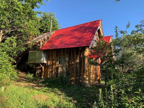Apple Tree Cottage Tiny Home