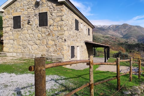 Quinta do Torgal - Alojamento Local - 110293/AL