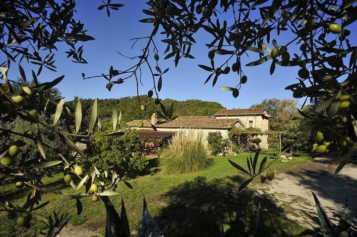 Masseria San Cataldo:natura,cultura e benessere