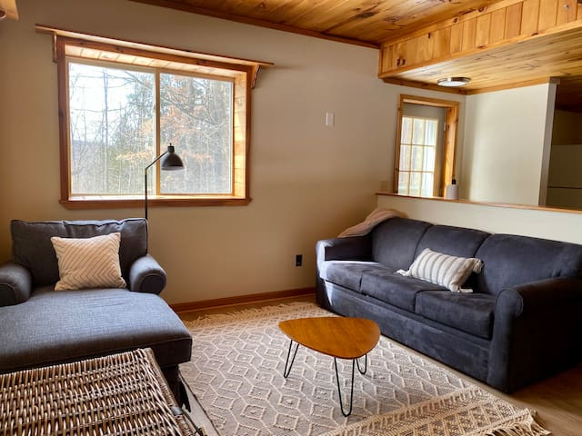 Downstairs Family Room and / or 4th Bedroom.    Large chase lounge & queen sized sofa bed.