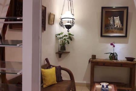 Main door to living room from the terrace