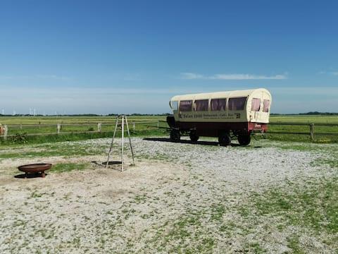Ostani u kočiji na farmi konja.