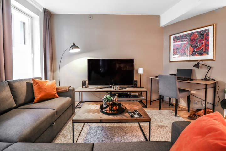 Nice Apt in Oslo's Most High-End & Popular Area