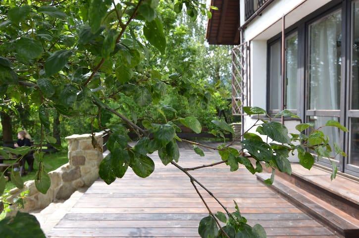 Ochlipówka. Dom na Orawie