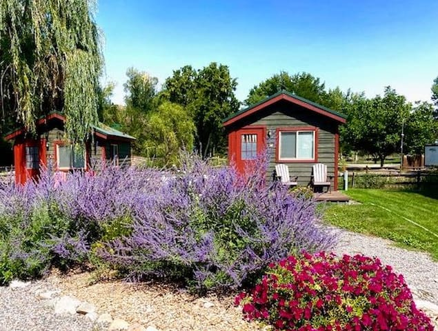 Rustic Park View Cabin in Montrose Co